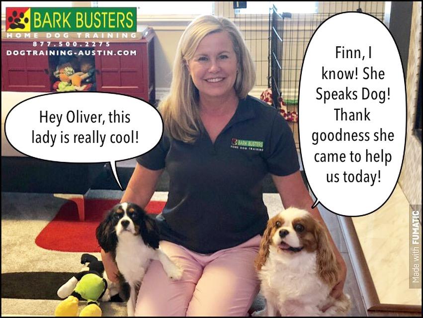 Lori Car Dog Training Bark Busters